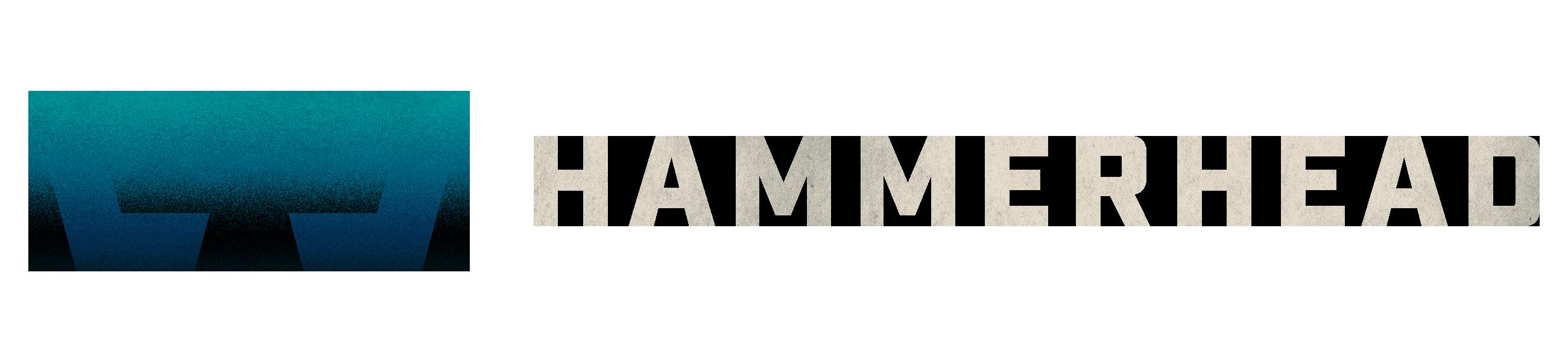 Hammerhead VR